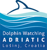Dolphin Watching Adriatic